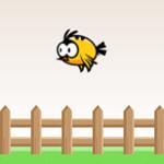 Spike Bird